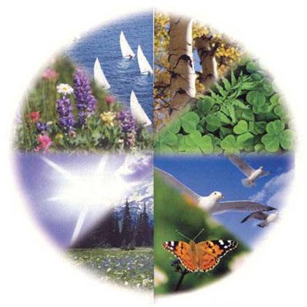Naturalight - iluminat, ventilare, racire